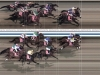 Dubai World Cup thoroughbred photo finish