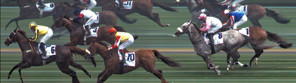 Chengdu Vision Pro Horse Racing Photo-Finish