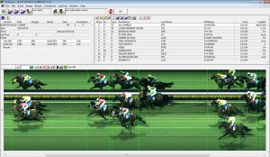 thoroughbred racing photo finish picture
