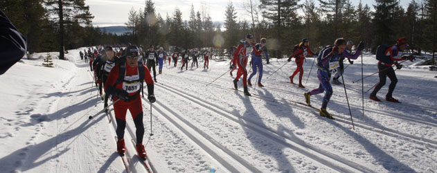 Skiiers start the 2013 Birkebeinerrennet