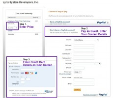 PayPal Online Payment Instructions