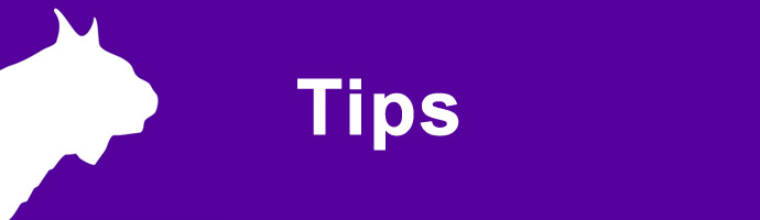 Tips And Tricks For New Timers Support Finishlynx
